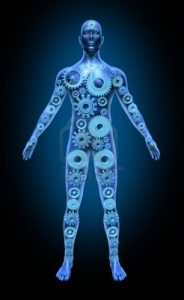 11570622-human-body-function-health-symbol-medical-icon-gears-cogs-anatomy-healthcare